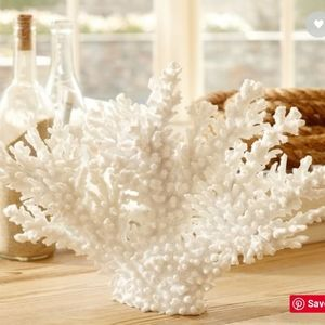 Pottery Barn White Spike Coral
